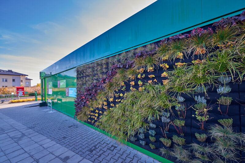 Zabka-ekosklep-czyste-powietrze-wiszace-ogrody.jpg