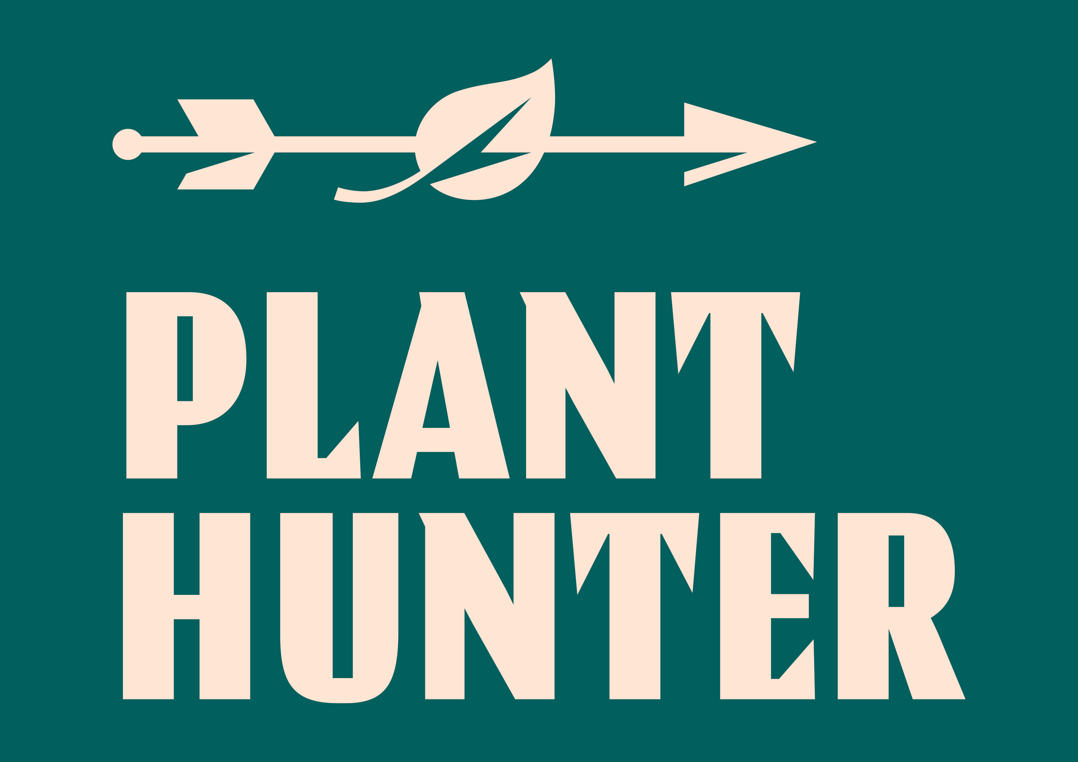 100% roślin, 100% smaku